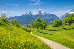 Idyllic spring landscape in the Alps with meadows and flowers stock photos