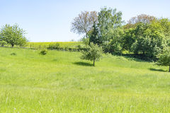 Idyllic spring time scenery. Idyllic rural spring time scenery in Hohenlohe, a area in Southern Germany Royalty Free Stock Image