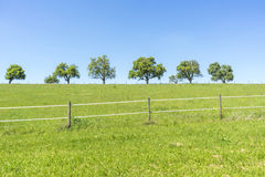 Idyllic spring time scenery. Idyllic rural spring time scenery in Hohenlohe, a area in Southern Germany Royalty Free Stock Photos