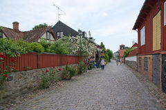 Free Idyllic Street With Roses And Cobble Stones Stock Photos - 50626263