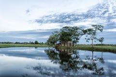 Idyllic summer house. Summer  landscape .Photo taken at Vietnamese Stock Photo