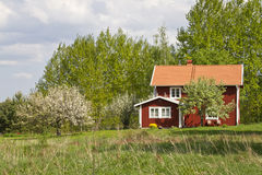 Idyllic summer house in Sweden. Houses and environment in Sweden Royalty Free Stock Photos