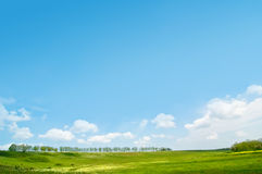 Idyllic summer landscape Royalty Free Stock Photo