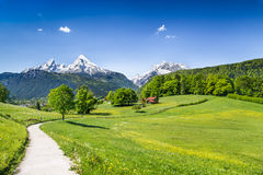 Idyllic summer landscape in the Alps Stock Photo