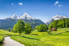 Idyllic summer landscape in the Alps Stock Images