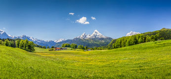 Idyllic summer landscape in the Alps Royalty Free Stock Images