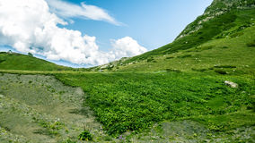 Idyllic summer landscape in mountains. Green meadows and blue sky with clouds Stock Photography