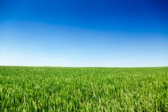 Idyllic summer landscape in Southern England UK. Idyllic english rural landscape with scenic green field under a blue summer sky in Southern England UK Stock Image