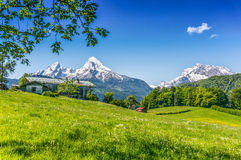 Idyllic summer landscape with traditional farm house in the Alps royalty free stock photography
