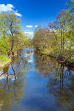 Idyllic summer scenery of at the river Stock Images