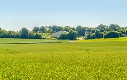 Spring time around Waldenburg. Idyllic sunny agricultural spring time scenery in Hohenlohe located in Southern Germany Royalty Free Stock Images