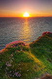 Idyllic sunset at Atlantic ocean. Cliffs of Moher at sunset in Co. Clare, Ireland Royalty Free Stock Photos
