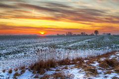 Idyllic sunset over snowy meadow Stock Photos