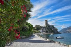 Idyllic tourist destination malcesine. lakeside promenade with r. Ed oleander and view to scaliger castle. garda lake italy stock photo