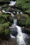 Idyllic Triberg Waterfalls Stock Photography