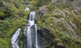 Idyllic Triberg Waterfalls Stock Photos