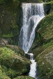 Idyllic Triberg Waterfalls Royalty Free Stock Images
