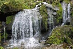 Idyllic Triberg Waterfalls Stock Images