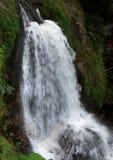 Idyllic Triberg Waterfalls Royalty Free Stock Photography