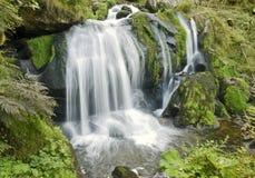 Idyllic Triberg Waterfalls Stock Photo