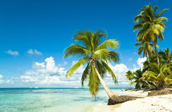 Idyllic tropical beach