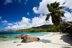 Idyllic tropical beach. On Mahe island at Seychelles Royalty Free Stock Photos
