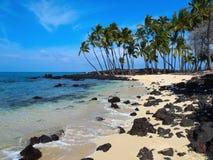 Idyllic tropical beach. Idyllic sandy tropical beach with palm trees and black lava rocks Stock Images