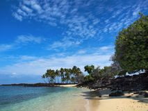 Idyllic tropical beach. Idyllic sandy tropical beach with palm trees and black lava rocks Stock Photography