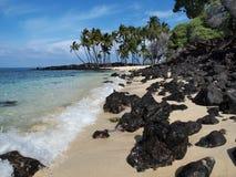Idyllic tropical beach. Idyllic sandy tropical beach with palm trees and black lava rocks Stock Image