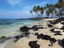 Idyllic tropical beach. Idyllic sandy tropical beach with palm trees and black lava rocks Royalty Free Stock Photos