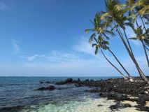 Idyllic tropical beach. Idyllic sandy tropical beach with palm trees and black lava rocks Stock Photos