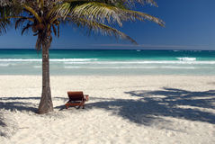 Idyllic tropical beach. With sun lounger under palm tree Royalty Free Stock Photos