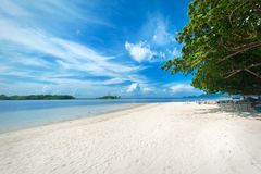 Idyllic tropical beach, palm, white sand and crystal clear water. Amazing beach. Landscape for background or wallpaper. Koh Samui, Thailand royalty free stock images