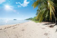 Idyllic tropical beach, palm, white sand and crystal clear water. Amazing beach. Landscape for background or wallpaper. Koh Yao Noi, Thailand royalty free stock image