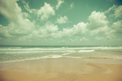 Idyllic tropical beach. Idyllic tropical sand beach background. Toned image Royalty Free Stock Photos