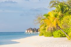 Tropical island with water bungalows. Sunny weather, palm trees and blue sea. Freedom and calmness landscape concept. Idyllic tropical beach scene, water villas royalty free stock images