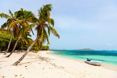 Idyllic beach at Caribbean. Idyllic tropical beach with white sand, palm trees and turquoise Caribbean sea water on exotic island at Tobago cays in St Vincent royalty free stock images