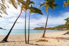 Idyllic beach at Caribbean. Idyllic tropical Carlisle bay beach with white sand, turquoise ocean water and blue sky at Antigua island in Caribbean Royalty Free Stock Image