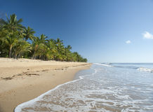 Idyllic tropical getaway at Mission Beach Stock Images