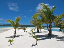 Idyllic tropical island beach. Royalty Free Stock Photos