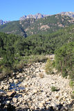 Idyllic valley on Corsica Island, France Royalty Free Stock Images