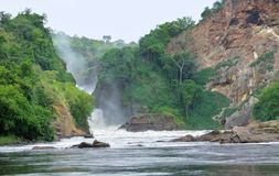 Idyllic view around the Murchison Falls Stock Photos