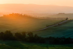 Idyllic view of cypress road leading to typical house in Tuscany. In beautiful morning sunlight and orange haze Stock Images