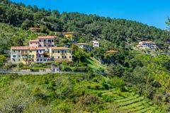 Idyllic view in Elba Island, Tuscany, Italy. Elba is a Mediterranean island in Tuscany, Italy, 10 kilometres 6.2 mi from the coastal town of Piombino, and the royalty free stock image