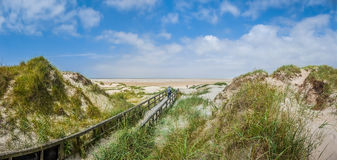 Idyllic view of european north sea dune landscape at beach. Idyllic path in typical european north sea dune landscape leading to the beach on a sunny day with Royalty Free Stock Photos