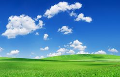 Idyllic view, green field and the blue sky with white clouds. Idyllic grassland, spring landscape, rolling green fields, blue sky and white clouds in the royalty free stock image