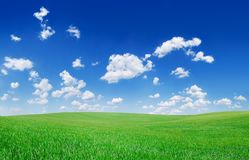 Idyllic view, green field and the blue sky with white clouds. Idyllic grassland, spring landscape, rolling green fields, blue sky and white clouds in the royalty free stock photography