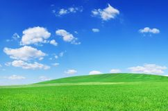 Idyllic view, green field and the blue sky with white clouds. Idyllic grassland, spring landscape, rolling green fields, blue sky and white clouds in the royalty free stock images