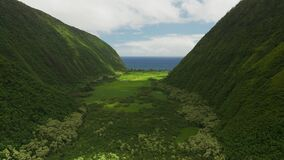 Idyllic view of hawaii mountains and green field between it with small narrow river, ocean on the horizon
