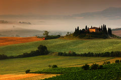 Idyllic view of hilly farmland in Tuscany in beautiful morning light, Italy. Foggy landscape in Tuscany. Belvedere in the Tuscany. Royalty Free Stock Photography